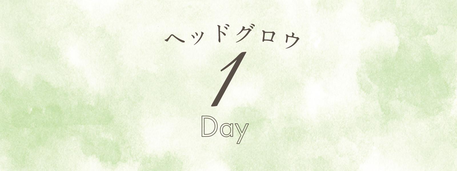 ヘッドグロウ 1Day
